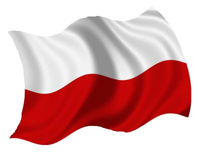 MPU Vorbereitung in polnisch